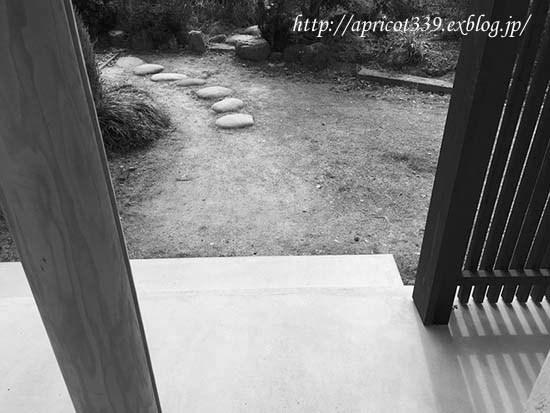 庭にパスメイトの小径を作る_c0293787_14270012.jpg