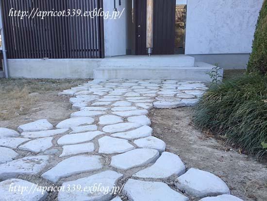 庭にパスメイトの小径を作る_c0293787_14315574.jpg