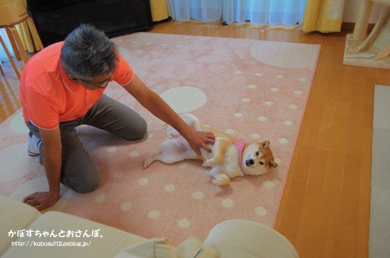 オバケちゃん_a0126590_05270363.jpg