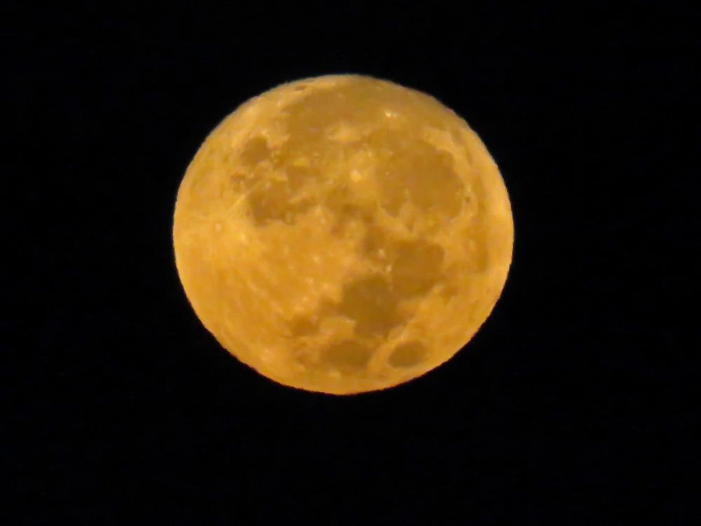 まん丸お月さん♪ (^o^)_c0049299_1912376.jpg