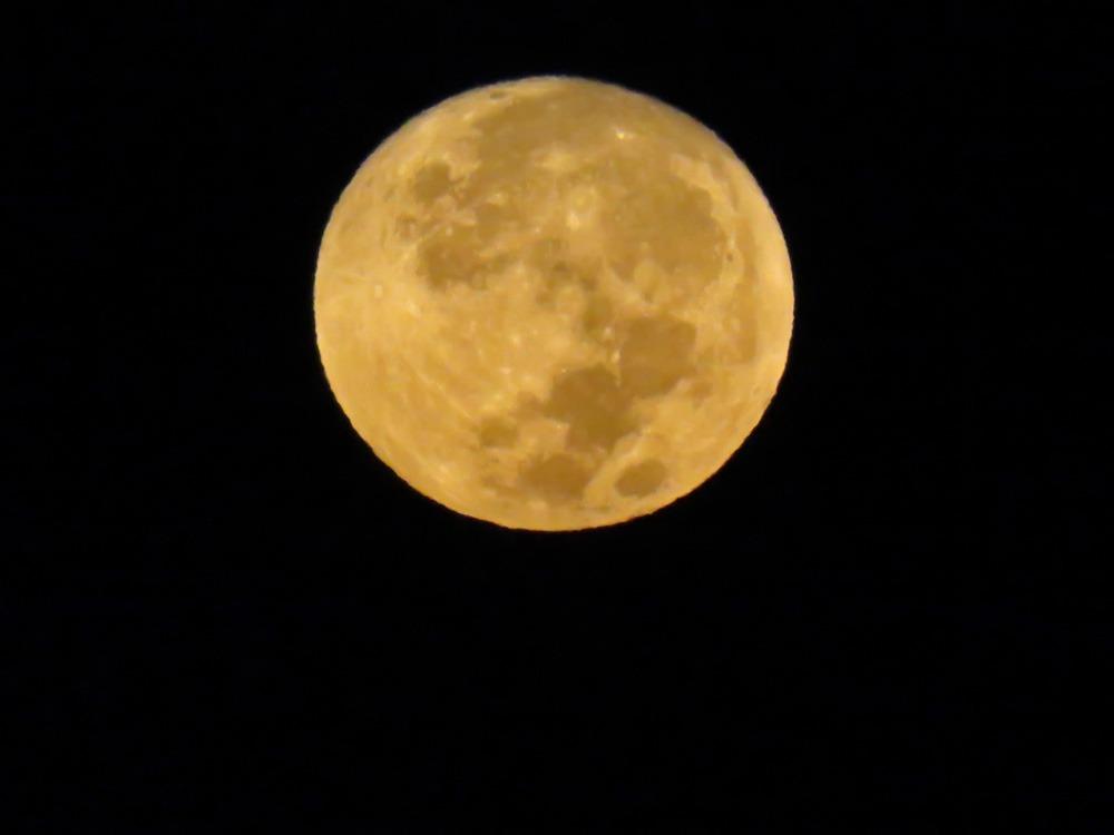 まん丸お月さん♪ (^o^)_c0049299_196547.jpg