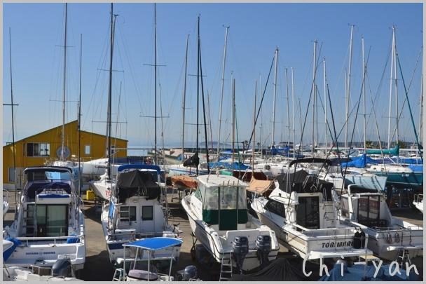 海風が少し冷たい 「湘南海岸」_e0219011_1551548.jpg