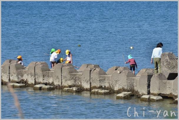 海風が少し冷たい 「湘南海岸」_e0219011_15523679.jpg