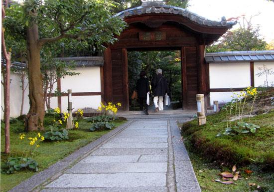 高台寺  園徳院_e0048413_14411632.jpg