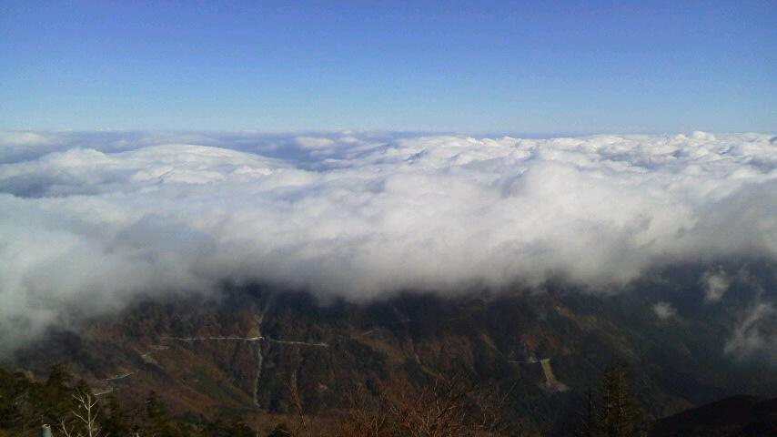 10月28日、朝の気温2℃。今朝は二代目綱男はNHKラジオでお喋りしました。    天気予報通り、夕方からの雨がやんで みごとな雲海になりました。_c0089831_12263364.jpg