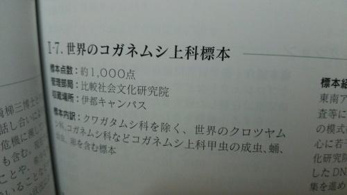 c0337631_23212075.jpg