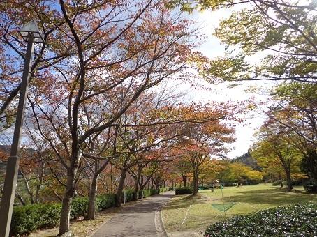 ☆健康公園の様子☆_d0166862_10555974.jpg