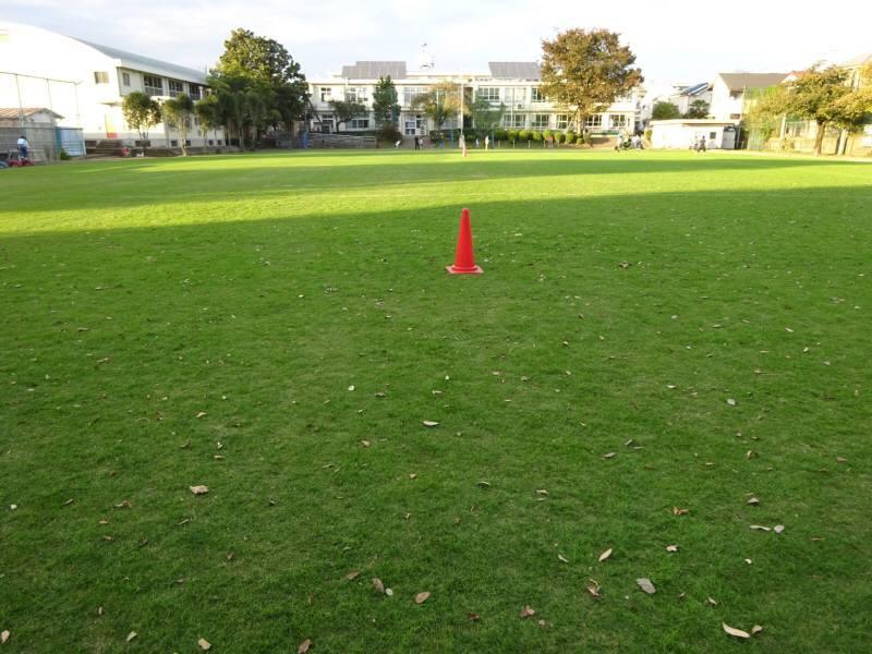 種まき後の初めての芝刈り_f0059673_19051517.jpg