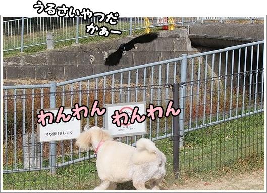 b0111376_15331879.jpg