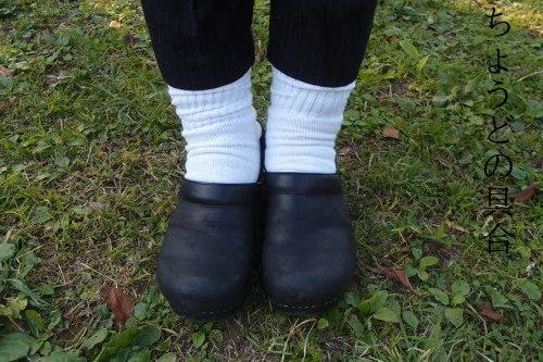 新しい白い靴下で冷え取りファッション15 10/24_c0342582_19214528.jpg