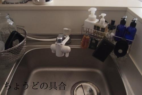 【キッチンスポンジ更新!!!】_c0342582_19421046.jpg