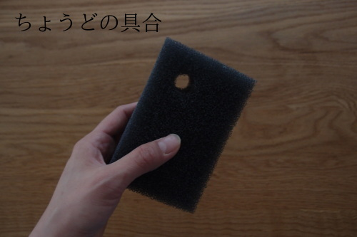 【キッチンスポンジ更新!!!】_c0342582_19471647.jpg
