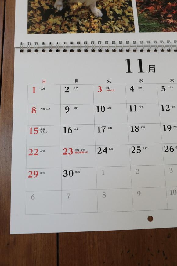 来年のカレンダーのこと_b0275998_10111993.jpg