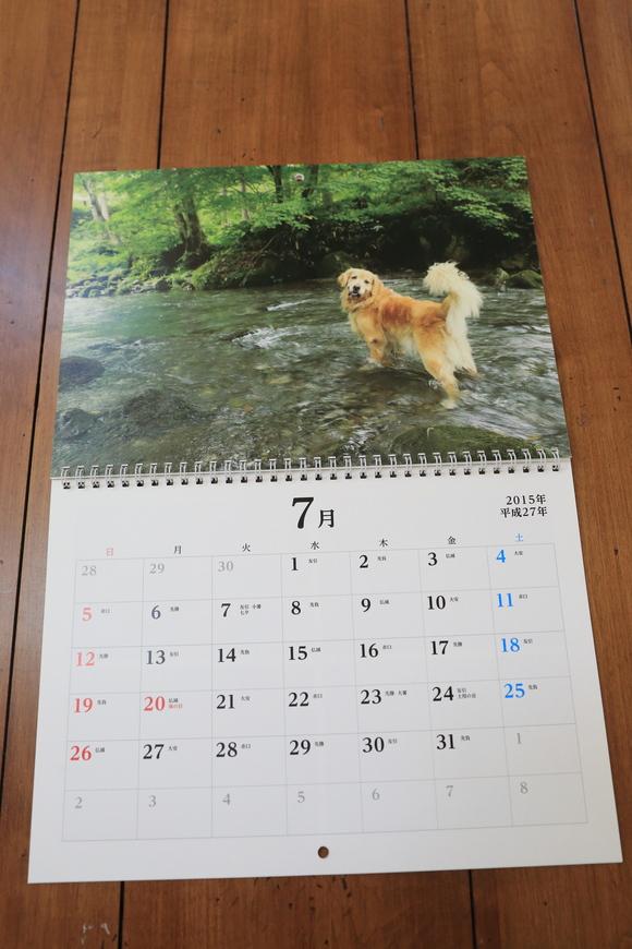 来年のカレンダーのこと_b0275998_103257.jpg