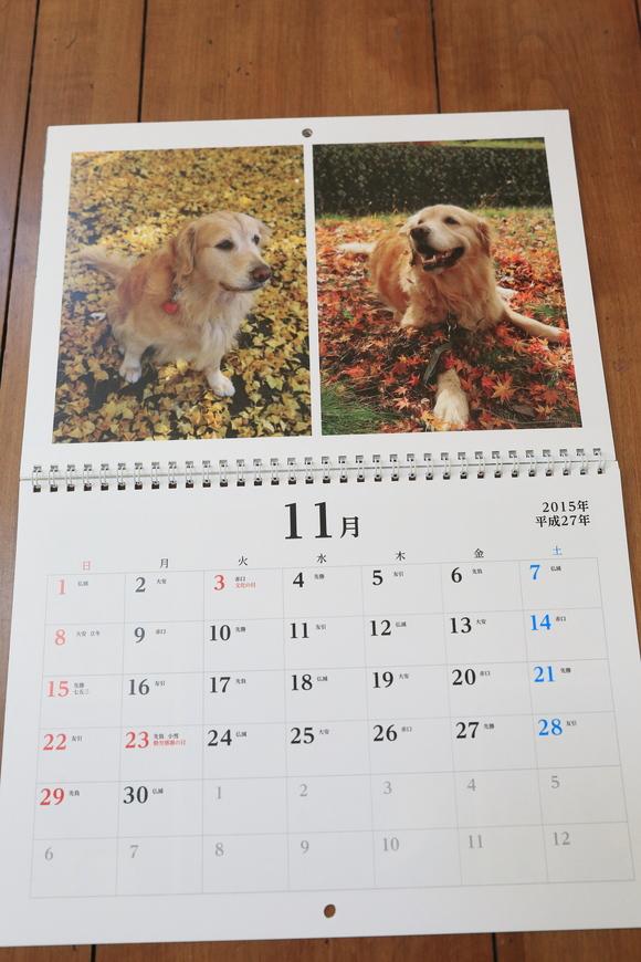来年のカレンダーのこと_b0275998_1045413.jpg