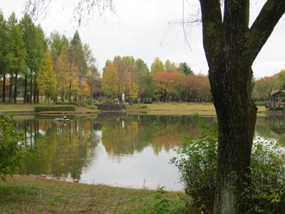 彩の森入間公園でのスケッチ会_b0129807_17323499.jpg