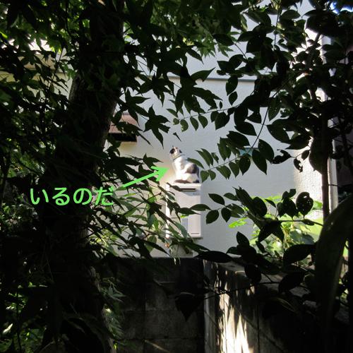 c0211810_028598.jpg