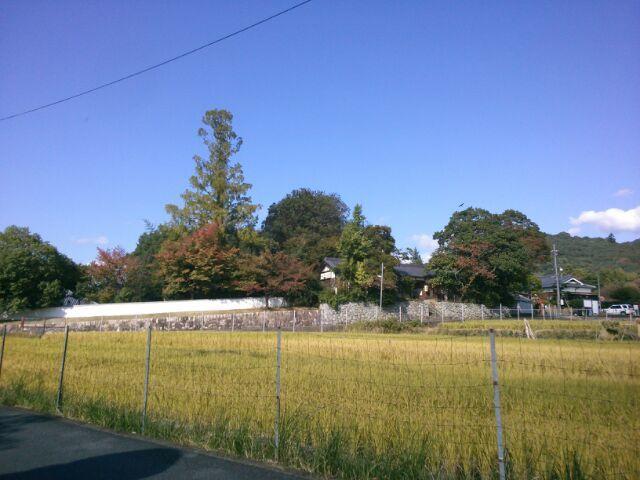 入江泰吉記念奈良市写真美術館_b0330312_10342259.jpg