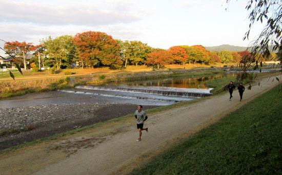 秋本番 植物園と鴨川_e0048413_1826688.jpg