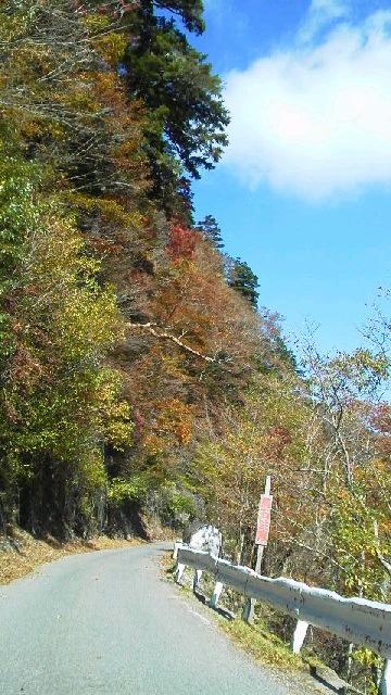 10月29日、朝の気温−3℃。車道の紅葉に目を見張ります。_c0089831_21513877.jpg
