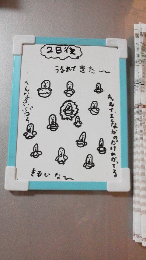 ホワイトボードに書いた自作のマンガ_a0167338_20481147.jpg