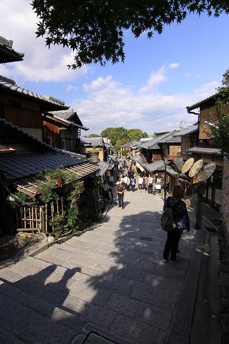 日本風景の「主役」であり続けること・・・_b0168041_18341584.jpg