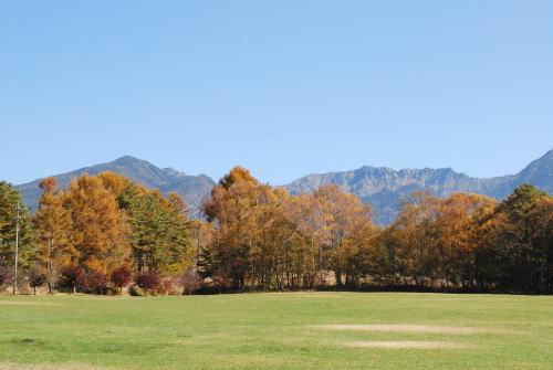 秋色の八ヶ岳_d0091671_9134883.jpg