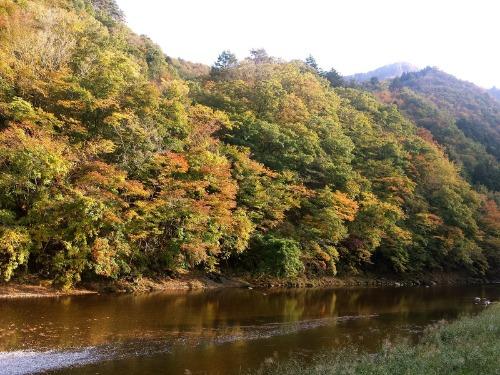 いま、紅葉真っ盛り! 11月のカレンダー_b0209774_17385852.jpg