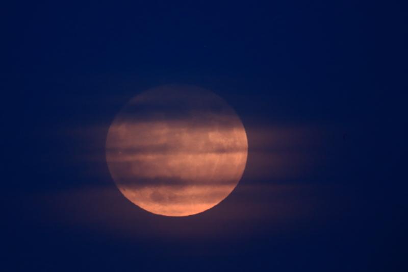 月と兎と亀_f0075075_21294683.jpg