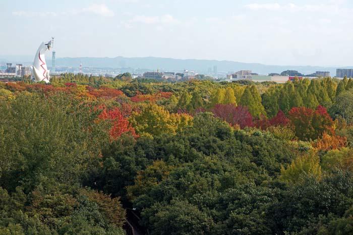 秋の万博公園_e0016894_1910371.jpg