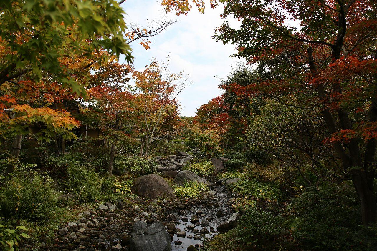 昭和記念公園にて_f0296999_17344520.jpg