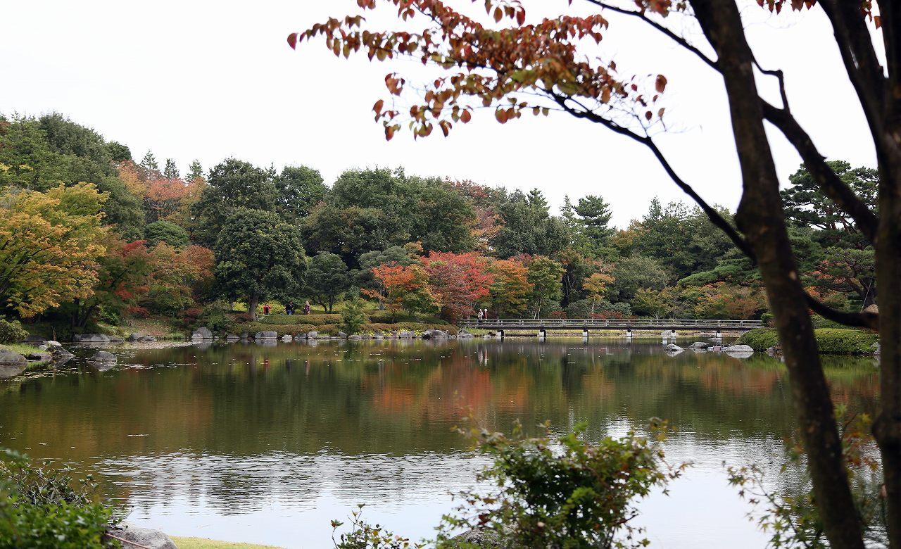昭和記念公園にて_f0296999_17345138.jpg