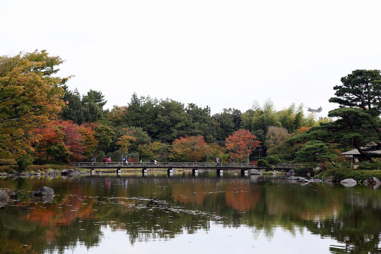 昭和記念公園にて_f0296999_17345755.jpg