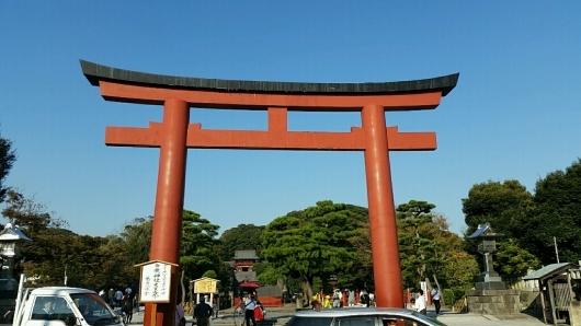 コチラが『大いちょうの大木。』鎌倉 鶴岡八幡宮。_d0092901_00574303.jpg