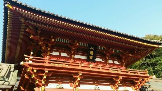 コチラが『大いちょうの大木。』鎌倉 鶴岡八幡宮。_d0092901_00575324.jpg