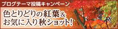 2015紅葉_00000010_18534469.jpg