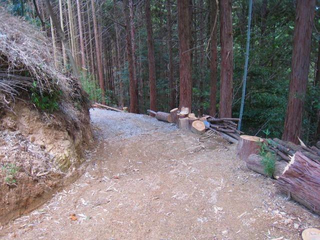 新たな自伐型林業者たち_e0002820_22145342.jpg