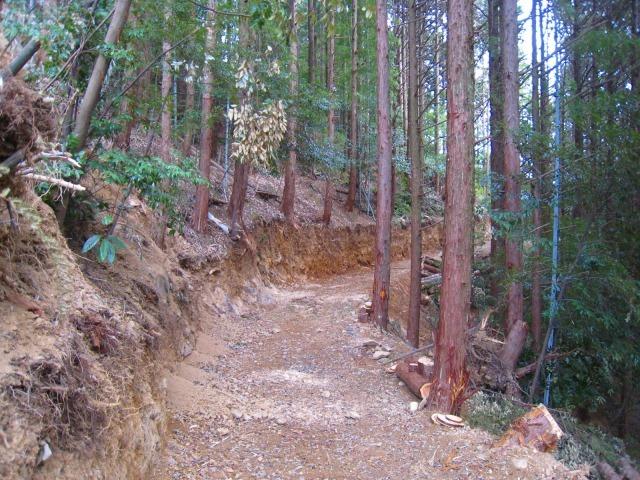 新たな自伐型林業者たち_e0002820_22145410.jpg