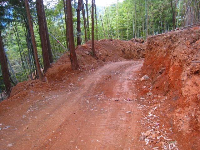 新たな自伐型林業者たち_e0002820_22145434.jpg