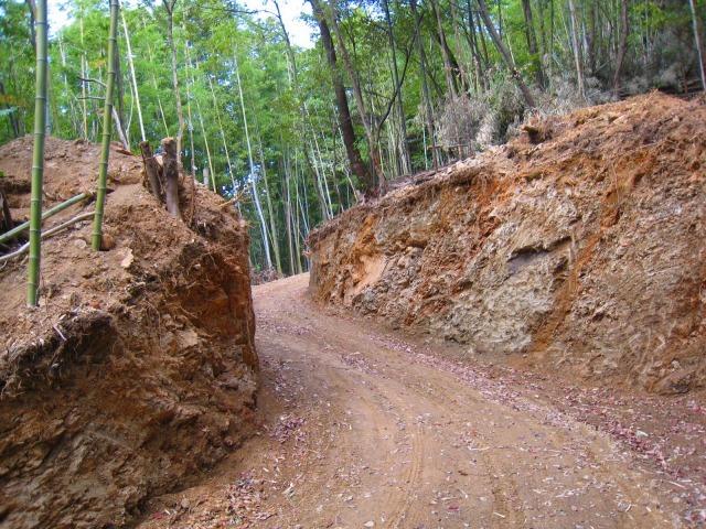 新たな自伐型林業者たち_e0002820_22145491.jpg