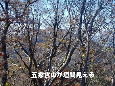 f0193521_1258568.jpg