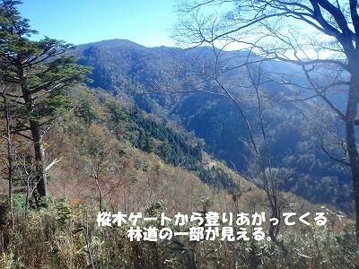 f0193521_1304996.jpg