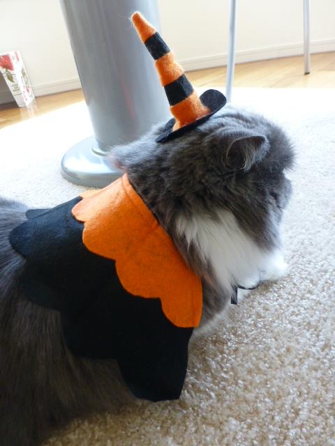 Happy Halloween_e0237625_12284860.jpg