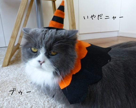 Happy Halloween_e0237625_12301430.jpg