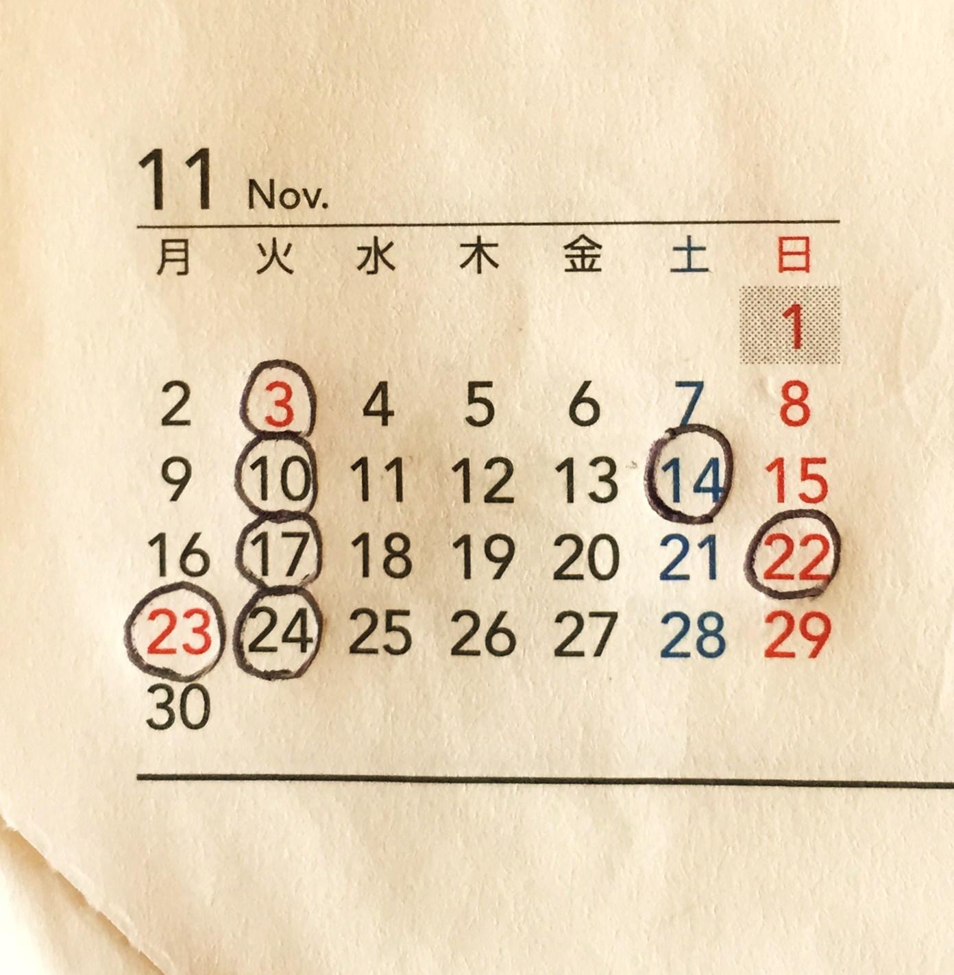 11月のお休み_a0174660_1616269.jpg