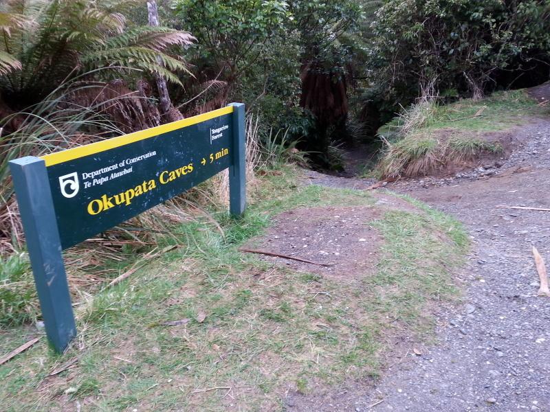 ニュージーランド 土ボタル