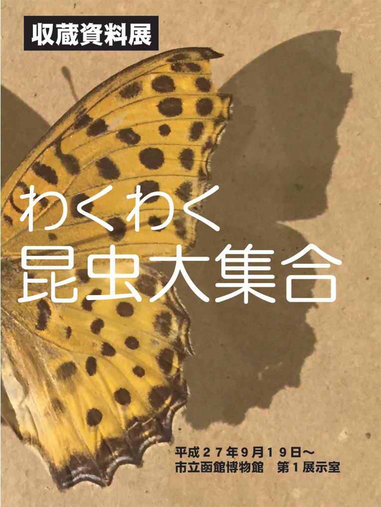 コラムリレー(第55回) 昆虫標本_f0228071_6402861.jpg