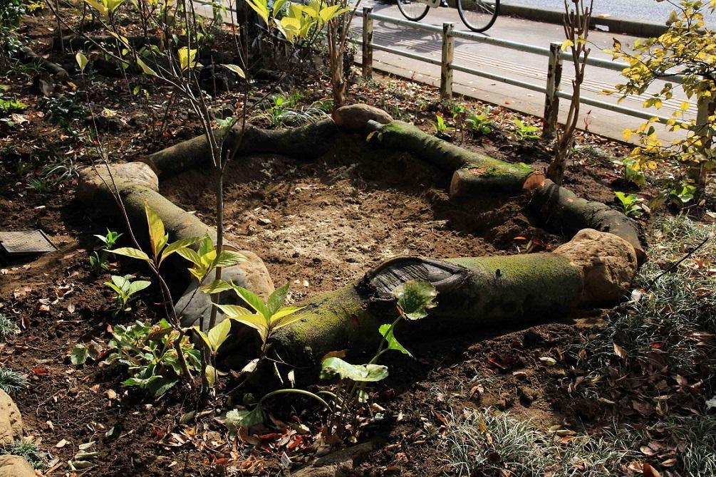 ケヤキと自然石を使って  ~ユリの花壇づくり~_a0107574_15380083.jpg