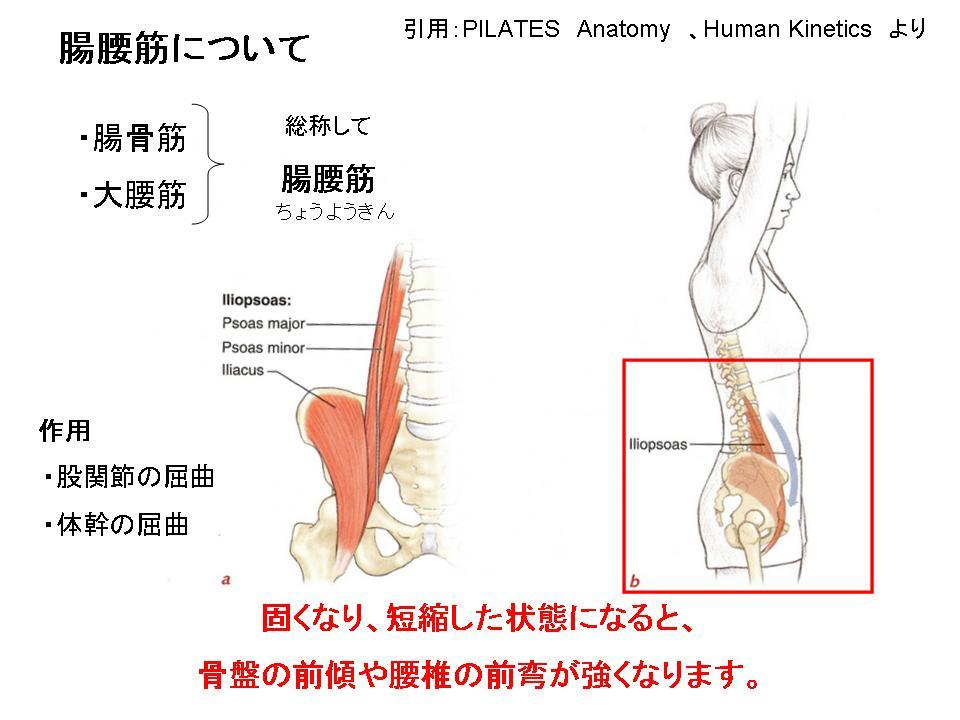 腰痛に効果的なセルフケア(股関節のストレッチ)_c0362789_10231759.jpg