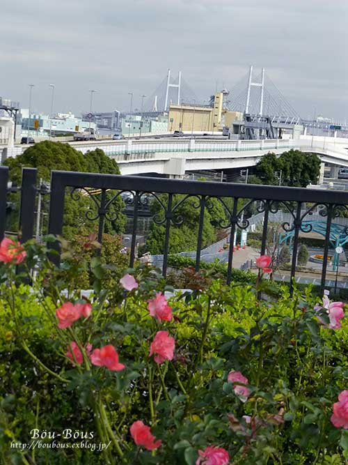 横浜西洋館めぐりハロウィンーその2_d0128697_15162324.jpg
